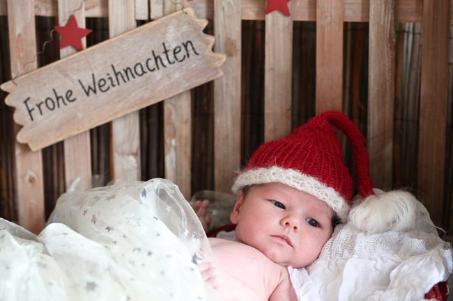 Frohe Weihnachten und einen sanften Rutsch ins neue Jahr! (2/2)