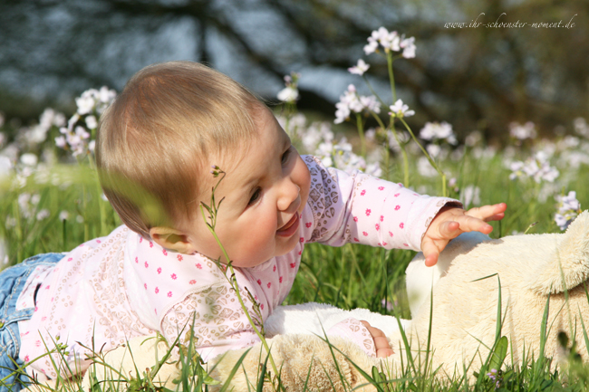 Models gesucht....Neugeborene, Babys, Zwillinge, Schwangere (3/3)