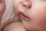 neugeborenenbilder stade 1