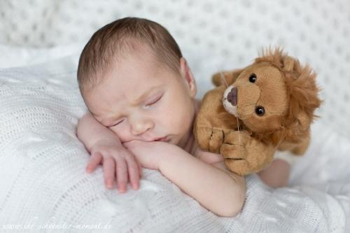 neugeborenenfotografie hartel