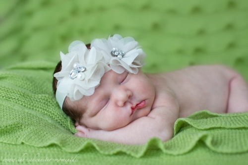 neugeborenenfotos buxtehude 6 tage jung