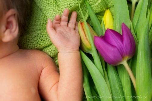 neugeborenenfotografie ostern