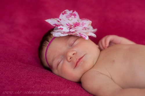 neugeborenenfoto haarband