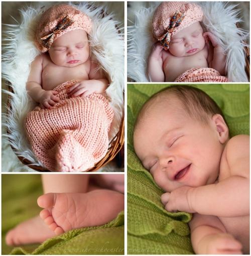 collage birne helene neugeborenenfotos