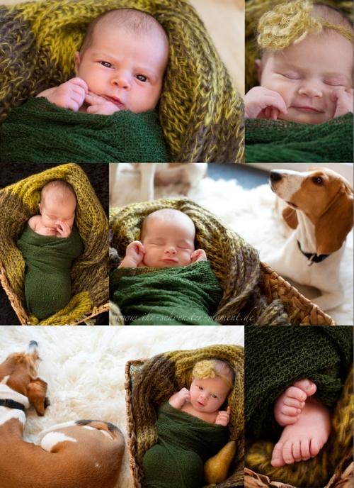 neugeborenenfotos collage birne 5