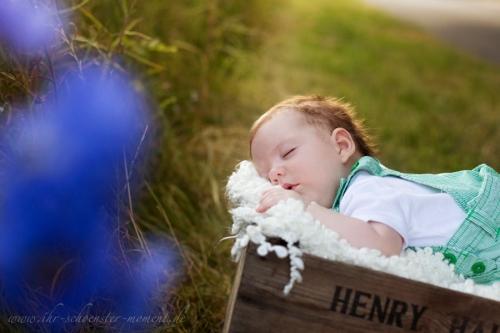 Babybilder abendsonne