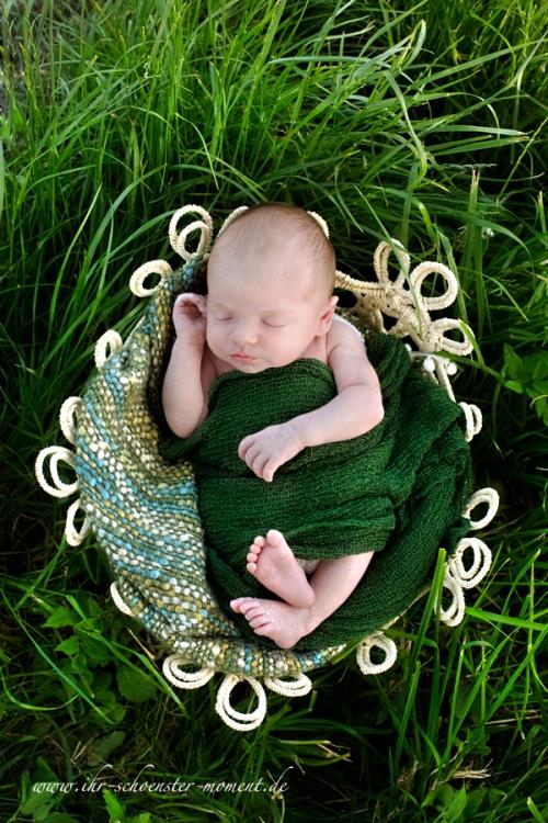 neugeborenenfoto draußen grün
