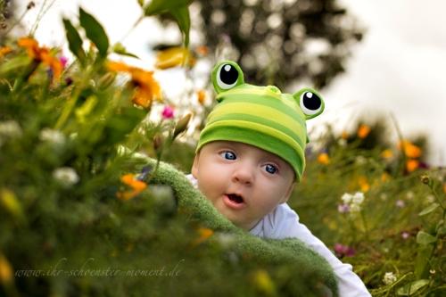 Babyfotos im grünen frosch