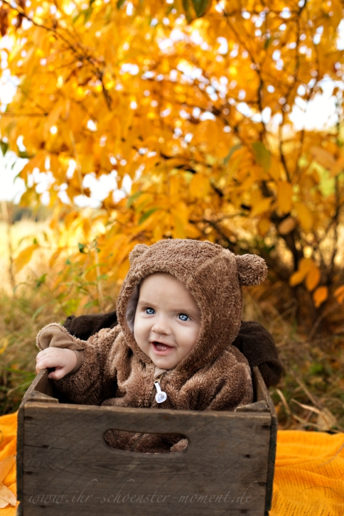 babyfotografie im herbst