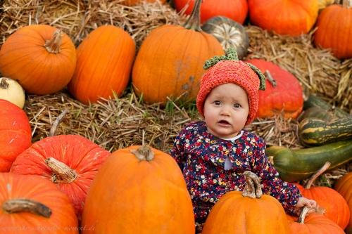 babyfotos kinderfotos halloween-2