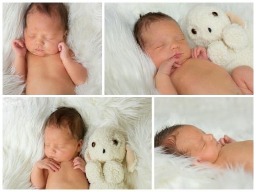 natürliche neugeborenenfotografie in buxtehude-5