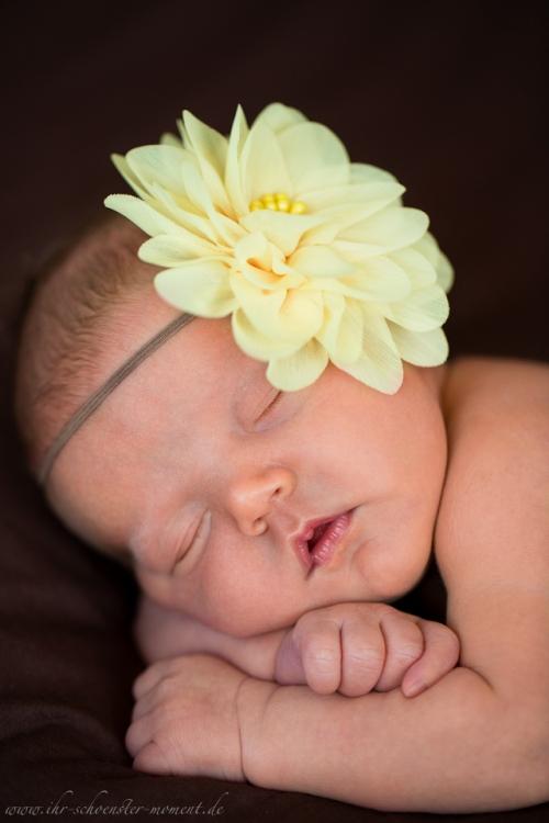 natürliche neugeborenenfotos-20