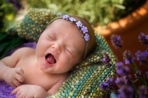 natürliche neugeborenenfotos-34