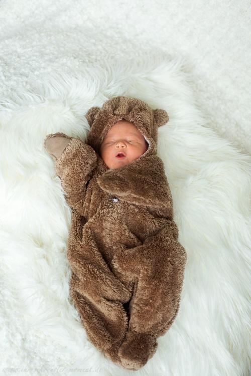 neugeborenenfotografie in hamburg-3