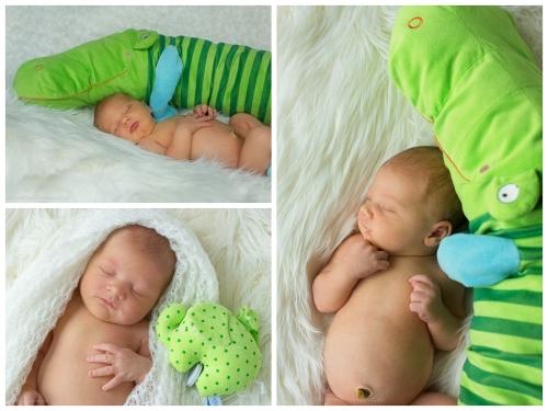 neugeborenenfotografie in hamburg-5