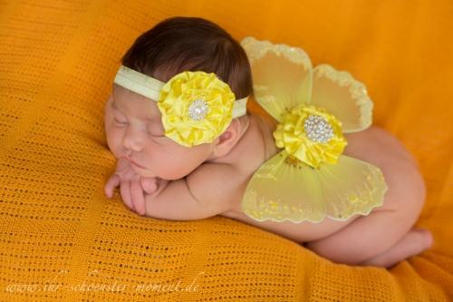 Neugeborenenfotos Fasching