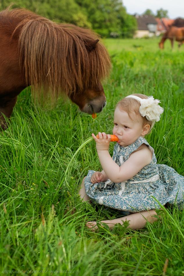 Kinderotos auf dem Bauernhof-14