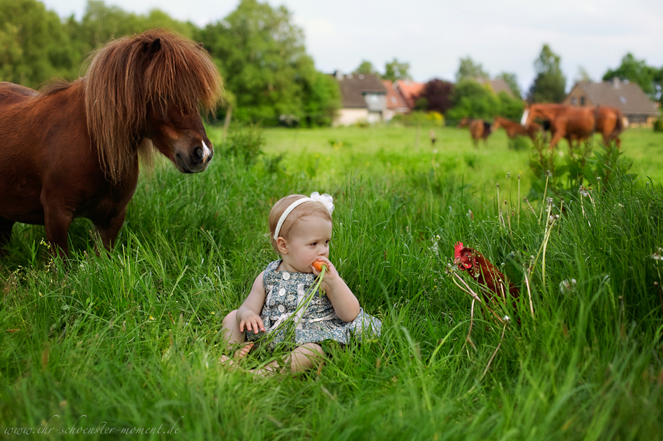 Kinderotos auf dem Bauernhof-20