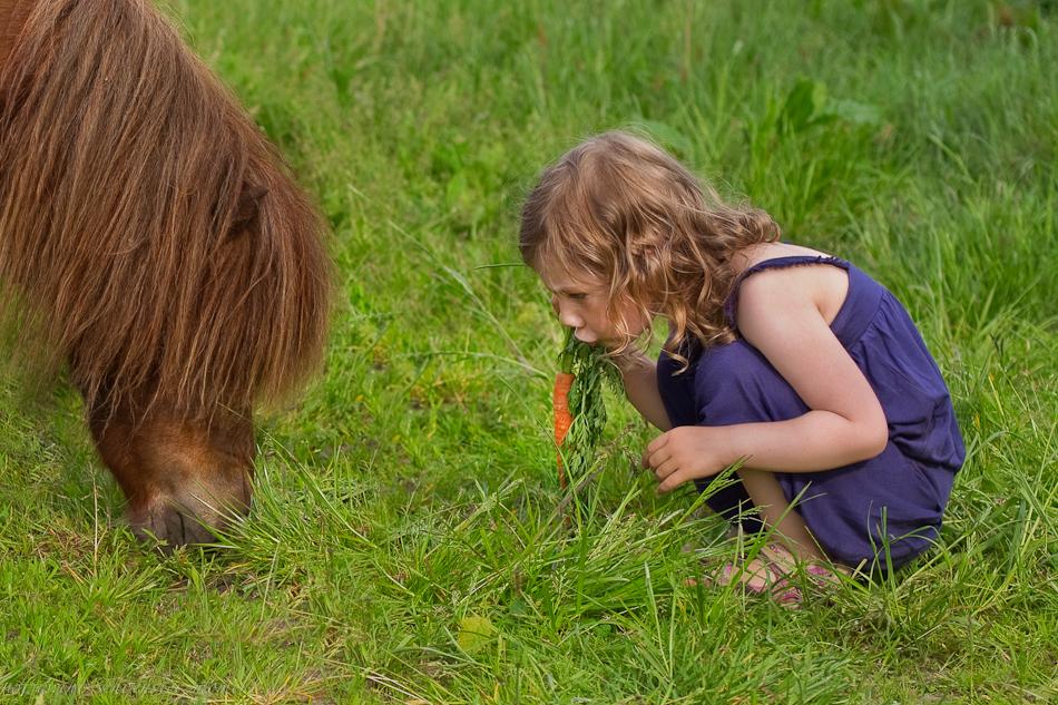 Kinderotos auf dem Bauernhof-35