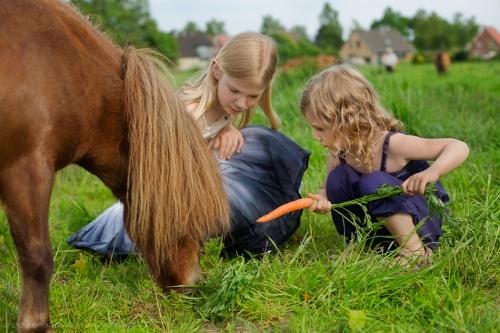 Kinderotos auf dem Bauernhof-37