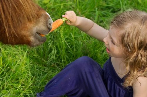 Kinderotos auf dem Bauernhof-40