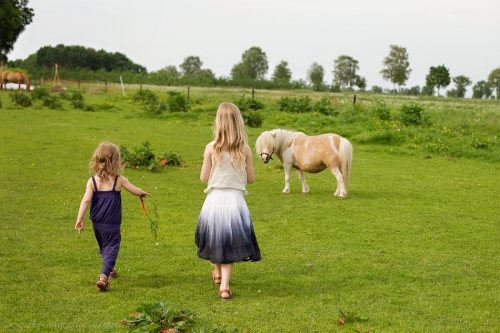 Kinderotos auf dem Bauernhof-48