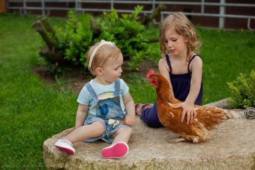 Kinderotos auf dem Bauernhof-53