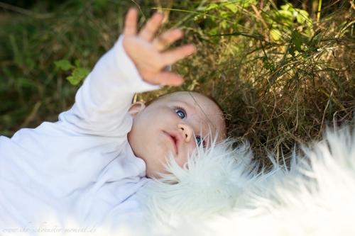 Babyfotografie in Bremen-64