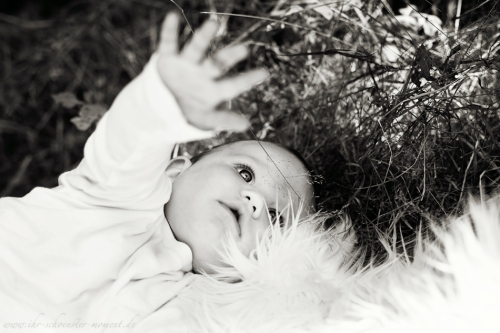 Babyfotografie in Bremen-66