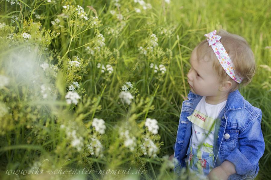 Kinderfotografie auf der Blumenwiese