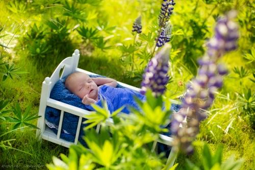 Neugeborenenfotoshooting Buxtehude-10