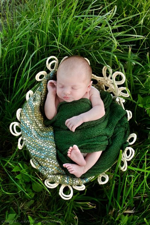 Neugeborenenfotoshooting Buxtehude-15