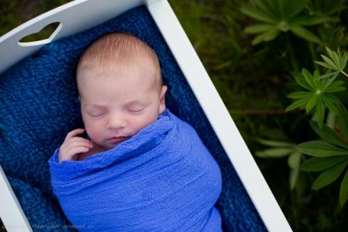 Neugeborenenfotoshooting Buxtehude-5