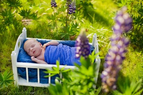 Neugeborenenfotoshooting Buxtehude-7