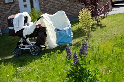 Neugeborenenfotoshooting Buxtehude