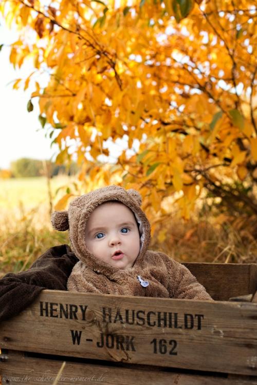 Babyfotos im Herbst Buxtehude-2