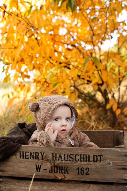 Babyfotos im Herbst Buxtehude-3