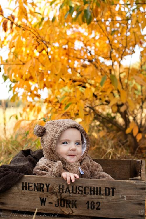 Babyfotos im Herbst Buxtehude-5