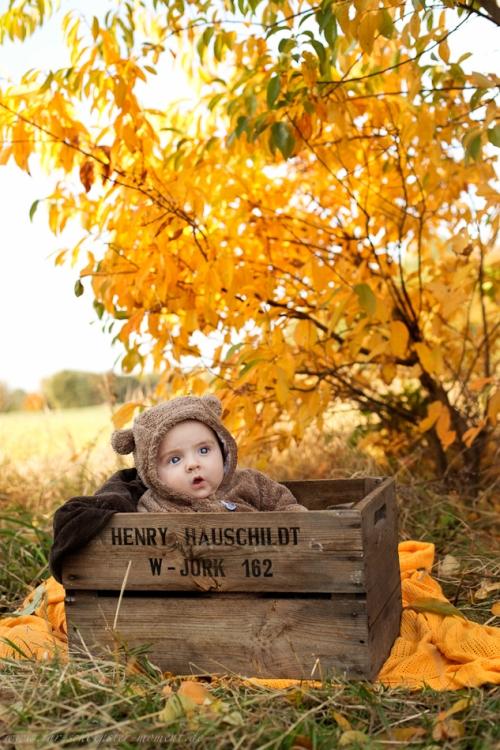 Babyfotos im Herbst Buxtehude-8