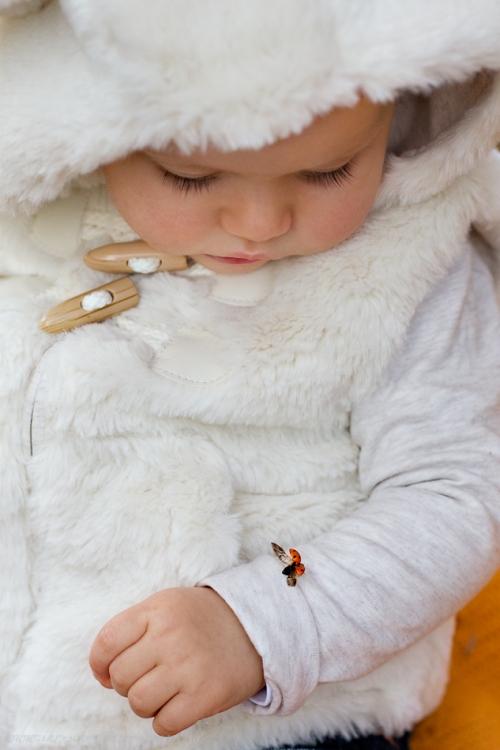 Babyfotos in Buxtehude Eisbärchen-17