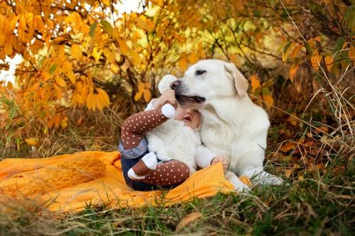 Babyfotos mit Hund in Buxtehude Eisbärchen-10