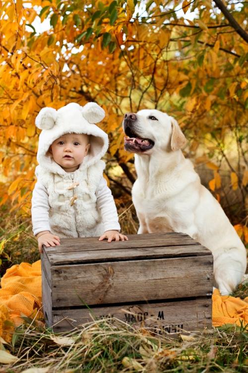 Babyfotos mit Hund in Buxtehude Eisbärchen-16