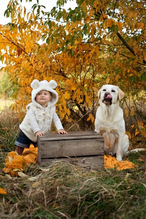 Babyfotos mit Hund in Buxtehude Eisbärchen-18