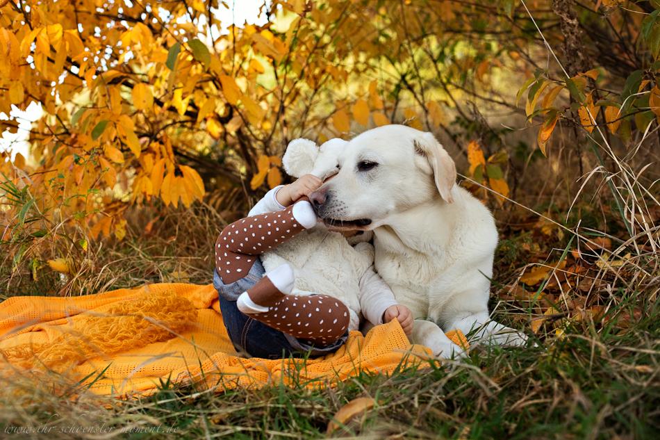 Babyfotos mit Hund in Buxtehude Eisbärchen-9