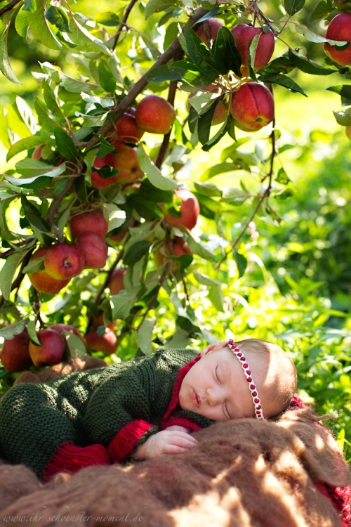 Neugeborenenfotos in Buxtehude Apfelmädchen_-10