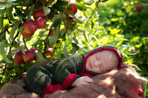 Neugeborenenfotos in Buxtehude Apfelmädchen_-6