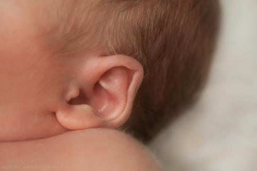 Neugeborenenfotos in Buxtehude Eisbärchen-11
