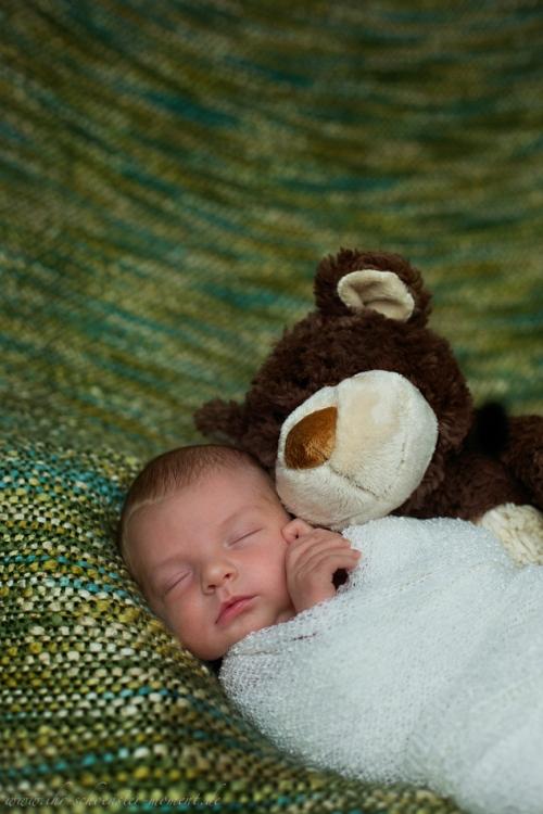 Neugeborenenfotos in Buxtehude Eisbärchen-16