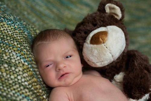 Neugeborenenfotos in Buxtehude Eisbärchen-18