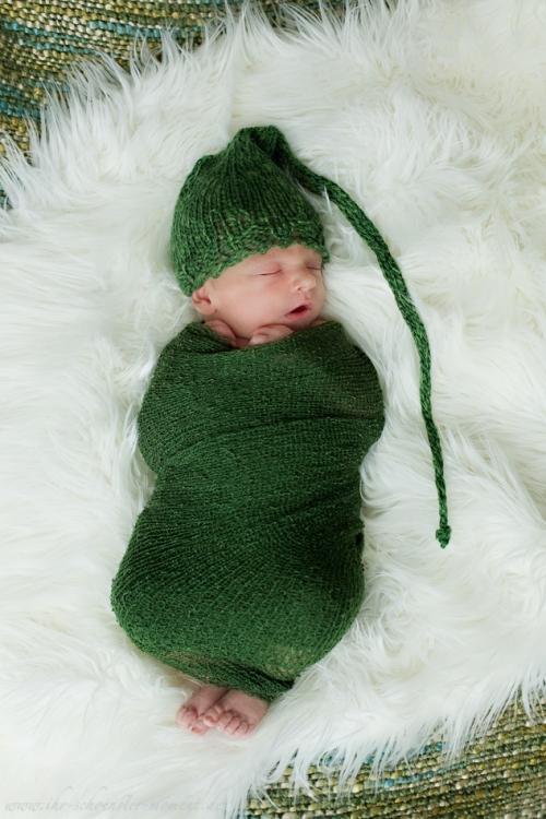 Neugeborenenfotos in Buxtehude Eisbärchen-4